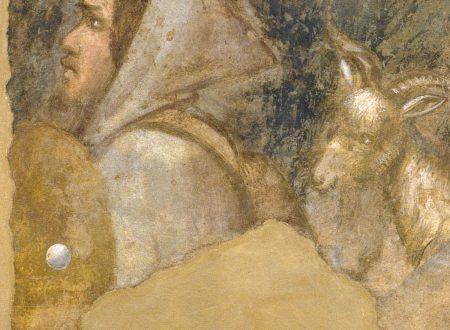 La Testa di Pastore: Affresco di Giotto alla Galleria dell'Accademia – Firenze