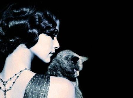 """""""Il gatto""""  ~ Poesia di Charles Baudelaire"""