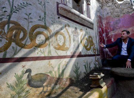 Pompei, riemerge la casa del giardino incantato: «Scoperta eccezionale»